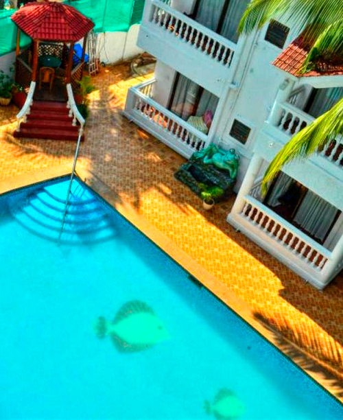 GOA (CALANGUTE BEACH) - WINDSOR BAY ALL PROPERTIES - THEMES SPECIAL